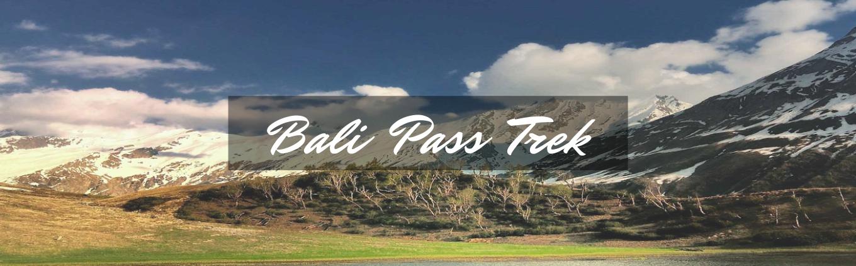 bali pass