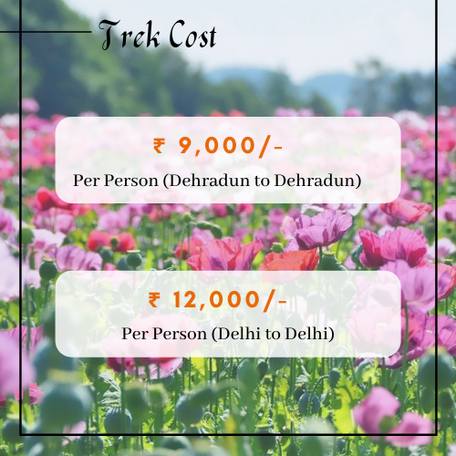 Valley of flower cost